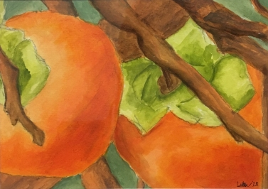 Persimmons, 8x10, Acrylic on Watercolor Paper. Not for sale.